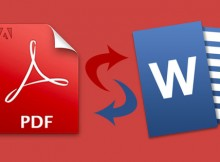 PDF in Word